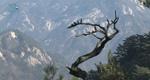 [국립공원과 함께하는 산행정보] 월악산 국립공원 [01/29]