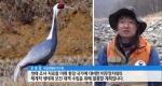 야생동물 낙원 DMZ...멸종위기 91종 포착 [12/09]