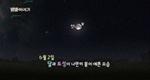 5월 30일21:00 금성-폴룩스 근접(4도)