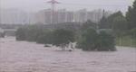 게릴라성 폭우