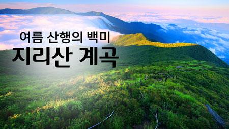 여름 산행의 백미 '지리산계곡'