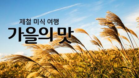 미식여행 '가을의 맛'