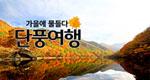 가을에 물들다 '단풍여행'