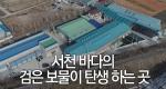 서천 바다의 검은 보물이 탄생 하는 곳 서천 김공장
