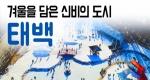 [구석구석 코리아] 제125회 겨울을 담은 신비의 도시, 태백