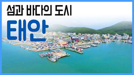 [구석구석 코리아] 제152회 섬과 바다의 도시, 태안