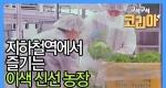 서울 지하철역 안에 농장이 있다?