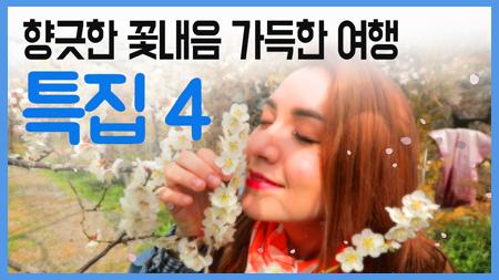 꽃의 향기를 따라서  / 구석구석 코리아 특집 4회
