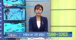 TV 보험상담소 [67회] 49세 여성 리모델링 / 폭넓게 보장되는 건강보험