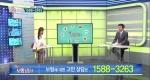 TV 보험상담소 [71회] 49세 남성 리모델링 / 3대 진단비 비교 플랜