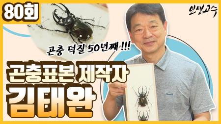 곤충 덕후 50년째! 곤충표본제작사 김태완 ㅣ 인생고수 [80회]