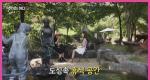 여기는 어디? [8회] 양평들꽃수목원 편