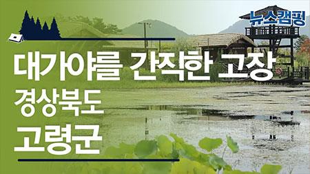 대가야의 시간이 깨어나는 곳, 경상북도 고령군ㅣ 뉴스캠핑 39회