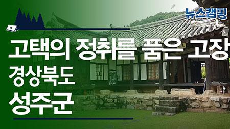 가을 참외가 있다? 성주 참외가 특별한 이유! 경상북도 성주군ㅣ 뉴스캠핑 40회