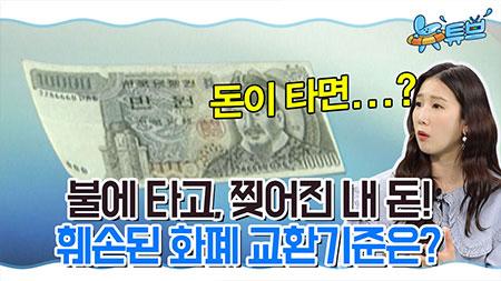 라떼뉴스 맛집 - 화폐의 역사 ㅣ 뉴튜브 [12회]